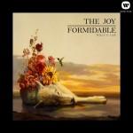 joy-formidable-wolfs-law